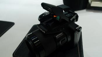 P1160876.jpg