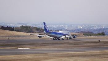 P1180216.jpg