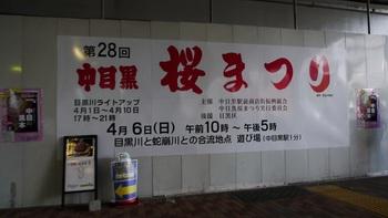 P1200556.jpg